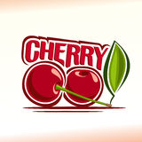 Vector illustration on the theme of  cherry Stock Image