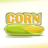 Vector illustration on the theme of  corn Stock Photos