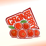Vector illustration on the theme of cranberry Stock Photos