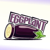 Vector illustration on the theme of  eggplant Royalty Free Stock Photos