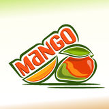 Vector illustration on the theme of mango Royalty Free Stock Photography