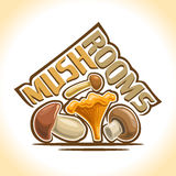 Vector illustration on the theme of mushrooms Stock Image