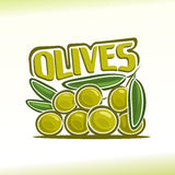 Vector illustration on the theme of  olives. Abstract vector illustration on the theme of olives Royalty Free Stock Photography