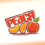 Vector illustration on the theme peach Royalty Free Stock Image