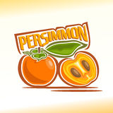 Vector illustration on the theme of persimmon Stock Image