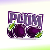 Vector illustration on the theme of  plum Royalty Free Stock Photography