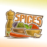 Vector illustration on the theme of spices Royalty Free Stock Images