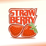 Vector illustration on the theme of  strawberry Royalty Free Stock Photo