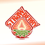 Vector illustration on the theme of  strawberry Royalty Free Stock Photos