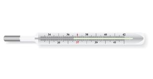 Vector illustration of the thermometer Royalty Free Stock Image