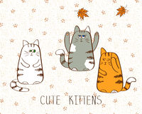 Vector illustration of three cute doodle kittens. Doodle cats Stock Photography