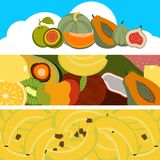 Fruit banners collection Royalty Free Stock Images