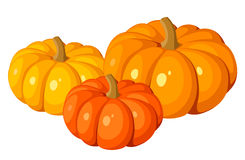 Vector illustration of three pumpkins. Stock Photography