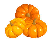 Vector illustration of three pumpkins. Royalty Free Stock Photos