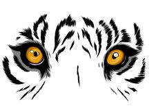 Vector illustration Tiger Eyes Mascot Graphic in white background royalty free stock photography