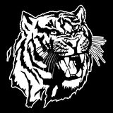 Vector illustration of a tiger`s head. Illustration of a tiger`s head Stock Photography