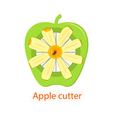Vector illustration of a tool for cutting lobes  apples. Knife with slices  apple green . Pieces  delicious fruit Royalty Free Stock Photo