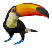 Vector illustration of toucan, Low Poly, Polygonal illustration.  Royalty Free Stock Photo