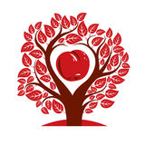 Vector illustration of tree with branches in the shape of heart. With an apple inside, love and motherhood idea image. Tree of life theme illustration Stock Image