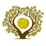 Vector illustration of tree with branches in the shape of heart Royalty Free Stock Photography