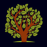 Vector illustration of tree with decorative leaves and branches Royalty Free Stock Photos