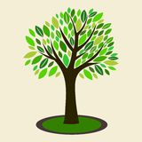 Vector illustration of tree. With leaf and branch vector illustration
