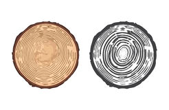 Vector illustration of tree rings. Royalty Free Stock Photos