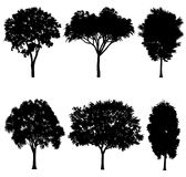 Vector illustration of tree silhouettes. For architectural compositions with backgrounds Royalty Free Stock Photo