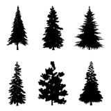 Vector illustration of tree silhouettes. Coniferous trees silhouettes for architectural compositions with backgrounds. Vector illustration Royalty Free Stock Images