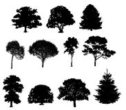 Vector illustration of tree silhouettes Royalty Free Stock Photo
