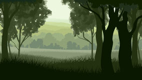 Horizontal illustration within greenwood forest. Stock Photography