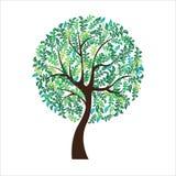 Vector illustration of tree on white background - Illustration Stock Photos