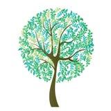 Vector illustration of tree on white background - Illustration. R illustration of tree on white background - Illustration Stock Photos