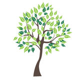 Vector illustration of tree on white background - Stock Photography
