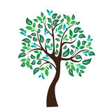 Vector illustration of tree on white background - Royalty Free Stock Image