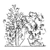 Vector Illustration of trees and lamps along the road.  Royalty Free Stock Photography