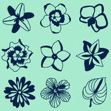 Vector illustration of tropical flowers set. In blue Royalty Free Stock Image