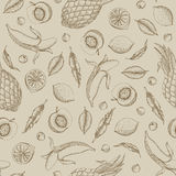 Vector illustration of tropical fruit seamless pattern painted i Royalty Free Stock Image