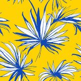 Tropical jungle floral seamless pattern background palm beach leaves. Stock Photography