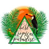 Vector illustration of tropical paradise card with palm leaves, birds, parrot, toucan, sun, summer lettering sign in Royalty Free Stock Photography