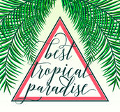 Vector illustration of tropical paradise card with palm leaves, summer lettering sign in triangle. Creative color Stock Image