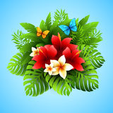 Vector illustration with tropical plants and Stock Photo