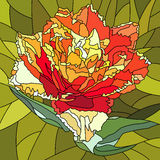 Vector illustration of tulip flower. Royalty Free Stock Image