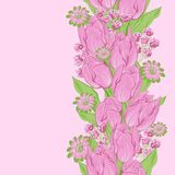 Vector illustration of tulips. (Seamless flowers Stock Images