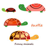 Vector illustration of a turtle. Stock Photo