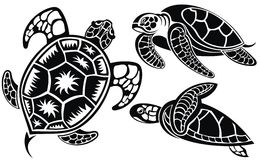 Vector illustration of turtles Stock Photos