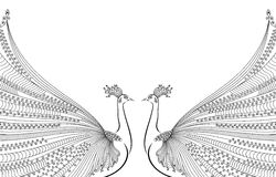 Vector illustration of two abstract, stylized peacocks, opposite each other, with luxurious tails. Stock Image