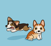 Vector illustration two cute Corgi have fun time in cartoon style. Vector illustration two cute Corgi have fun time Stock Images