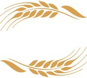 Gold ripe wheat ears frame, border or corner element. Vector illustration of two gold ripe wheat ears. Can be used as frame, corner or border design element Royalty Free Stock Photos