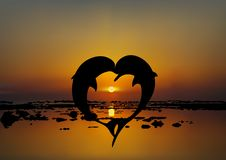 Vector illustration of two lovers dolphins in heart shape. At sunset or sunrise over sea Stock Images